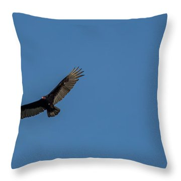 Yampa Valley Flight  Throw Pillow
