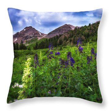 Throw Pillow featuring the photograph Yankee Boy Basin by Bitter Buffalo Photography