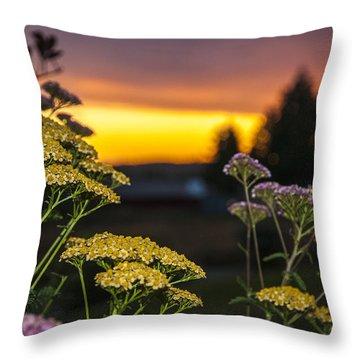 Yarrow At Sunset Throw Pillow