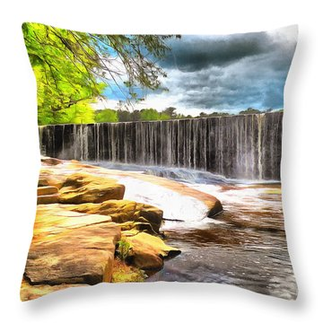 Decorative Pillows Raleigh Nc : Yates Mill Dam Raleigh Nc Photograph by Mylinda Revell