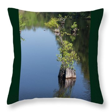 Yawkey Wildlife Refuge - Cat Island Throw Pillow by Suzanne Gaff