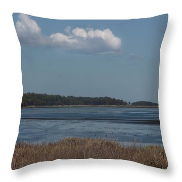 Yawkey Wildlife Reguge - View From The Causeway Throw Pillow by Suzanne Gaff