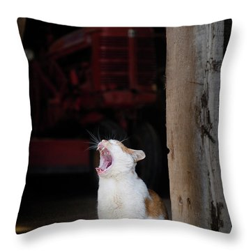 Throw Pillow featuring the photograph Yawning Barn Cat And Tractor by Dennis Dame