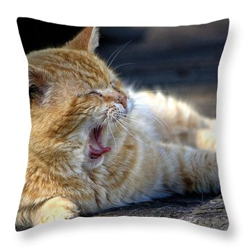 Throw Pillow featuring the photograph Yawning by Chriss Pagani
