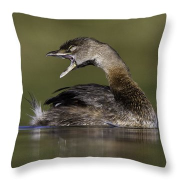 Yawning Grebe Throw Pillow