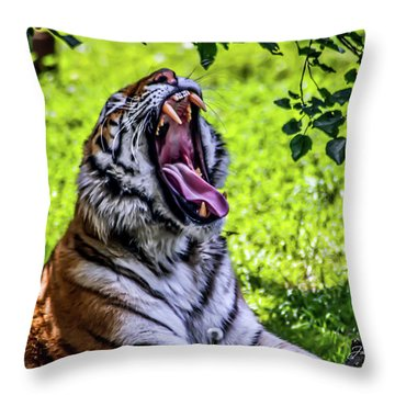 Yawning Tiger Throw Pillow by Joann Copeland-Paul