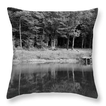 Ye Old Swimming Hole Throw Pillow
