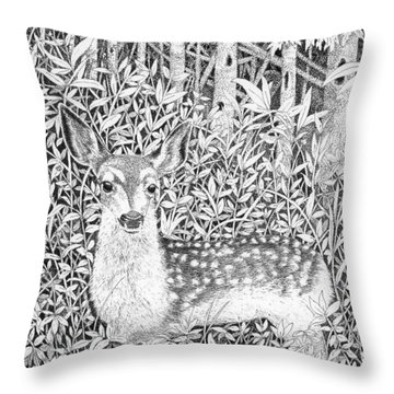 Yearling Throw Pillow by Lawrence Tripoli