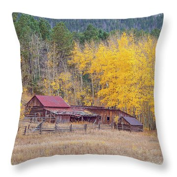 Yearning For The Tranquility Of A Rustic Milieu  Throw Pillow