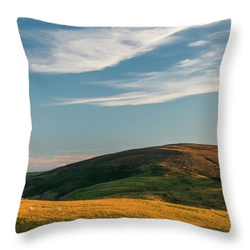 Yearning Law Throw Pillow