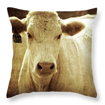 Throw Pillow featuring the photograph Yeg 3110 by Trish Mistric
