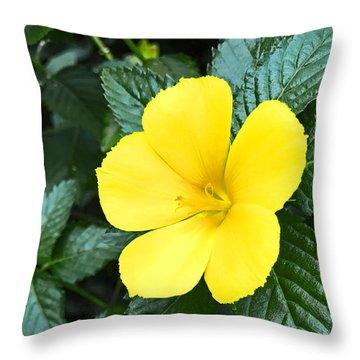 Yellow Alder Flower Throw Pillow