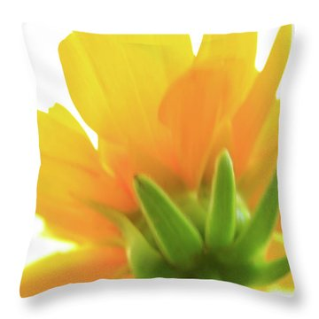 Throw Pillow featuring the photograph Yellow And Green by Roger Mullenhour