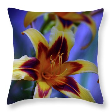 Yellow And Orange And Garnet Daylilies 1270 H_2 Throw Pillow