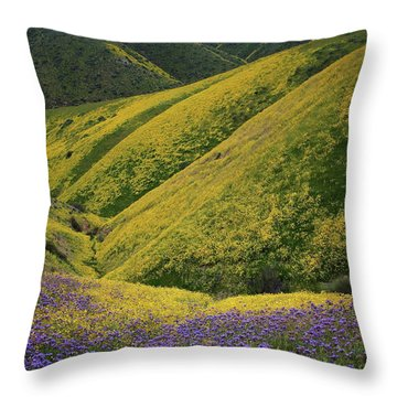 Yellow And Purple Wildlflowers Adourn The Temblor Range At Carrizo Plain National Monument Throw Pillow by Jetson Nguyen