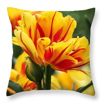 Yellow And Red Triumph Tulips Throw Pillow by Rona Black