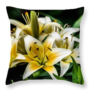 Yellow And White Lilys Throw Pillow