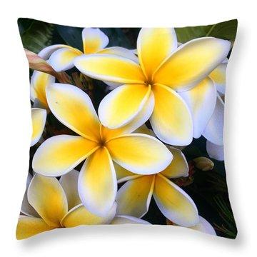 Yellow And White Plumeria Throw Pillow