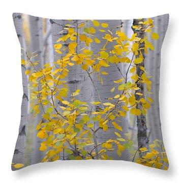 Yellow Aspen Tree Throw Pillow