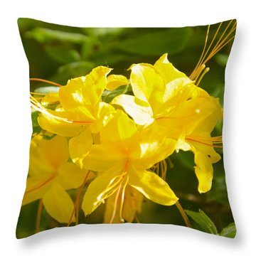 Yellow Azaleas Throw Pillow