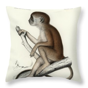 Yellow Baboon, Papio Cynocephalus Throw Pillow
