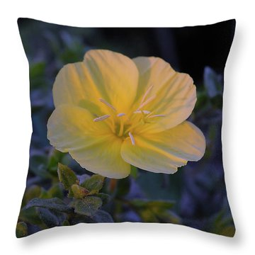 Throw Pillow featuring the photograph Yellow Beach Evening Primrose by Marie Hicks