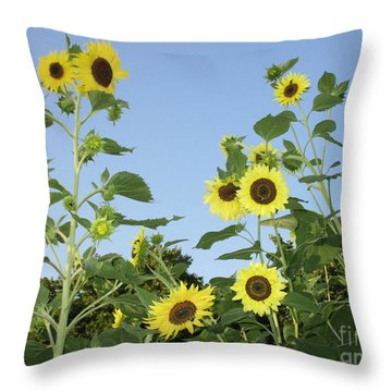 Yellow Beauties Throw Pillow by Charlotte Gray