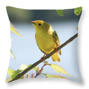 Yellow Beauty Throw Pillow by Anita Oakley