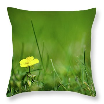 Throw Pillow featuring the photograph Yellow Beauty by Kennerth and Birgitta Kullman