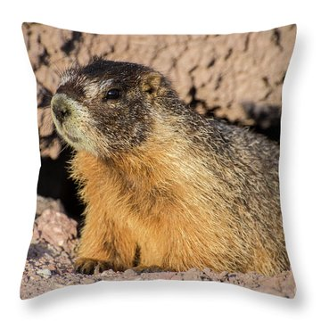 Yellow-bellied Marmot - Capitol Reef National Park Throw Pillow