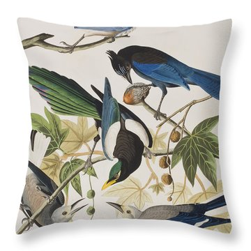 Yellow-billed Magpie Stellers Jay Ultramarine Jay Clark's Crow Throw Pillow