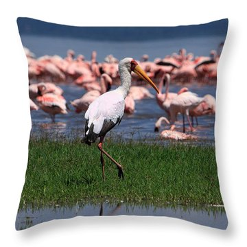 Yellow Billed Stork Throw Pillow