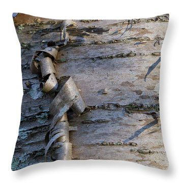Throw Pillow featuring the photograph Yellow Birch Details by Andrew Pacheco