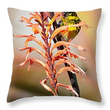 Throw Pillow featuring the photograph Yellow Bird Hi by AJ Schibig