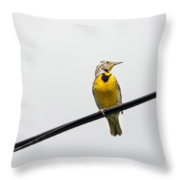 Yellow Bird Throw Pillow by Rebecca Cozart