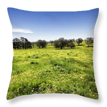 Throw Pillow featuring the photograph Yellow Blanket by Douglas Barnard