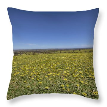 Throw Pillow featuring the photograph Yellow Blanket II by Douglas Barnard