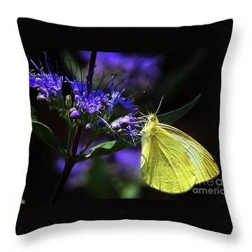 Throw Pillow featuring the photograph Yellow Butterfly  by Elaine Manley