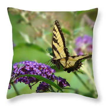 Yellow Butterfly On Purple Throw Pillow