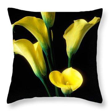 Yellow Calla Lilies  Throw Pillow