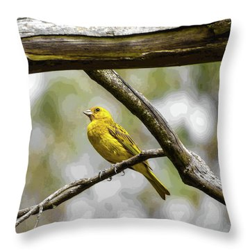 Yellow Canary Throw Pillow