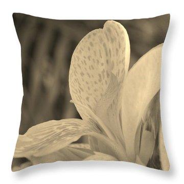 Yellow Canna Throw Pillow by Melanie Moraga