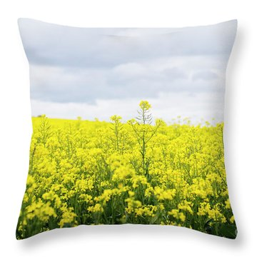 Throw Pillow featuring the photograph Yellow Canopies by Ivy Ho