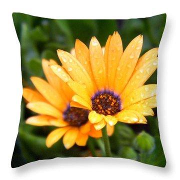 Yellow Colored Petals Throw Pillow