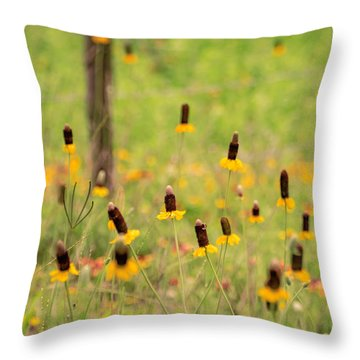 Yellow Cone Flower Throw Pillow