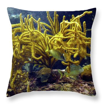 Throw Pillow featuring the photograph Yellow Coral Dance by Francesca Mackenney