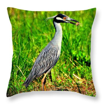 Throw Pillow featuring the photograph Yellow Crested Night Heron Catches A Fiddler Crab by Barbara Bowen