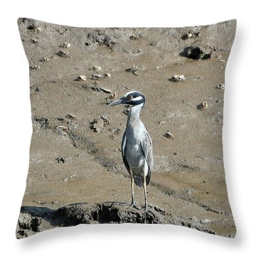 Yellow-crowned Night-heron Throw Pillow by Al Powell Photography USA