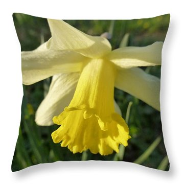 Yellow Daffodil 2 Throw Pillow by Jean Bernard Roussilhe