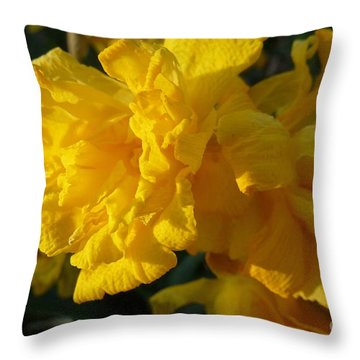 Yellow Daffodils Throw Pillow by Jean Bernard Roussilhe